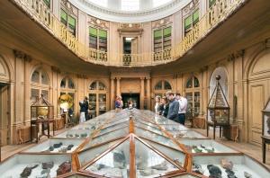 La grande salle du Musée Teyler, inchangée depuis 1784.